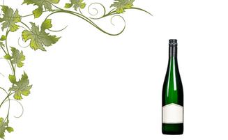 Besuchen Sie unseren Weinshop